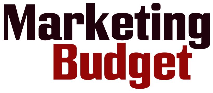 Umverteilung des Online-Marketing Budget für mehr Interaktionen mit Kunden